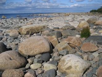Stenig-strand-pa-Rodkallen